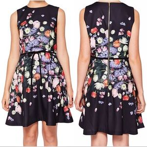 TED BAKER Izobela Kensington Floral Bow Dress